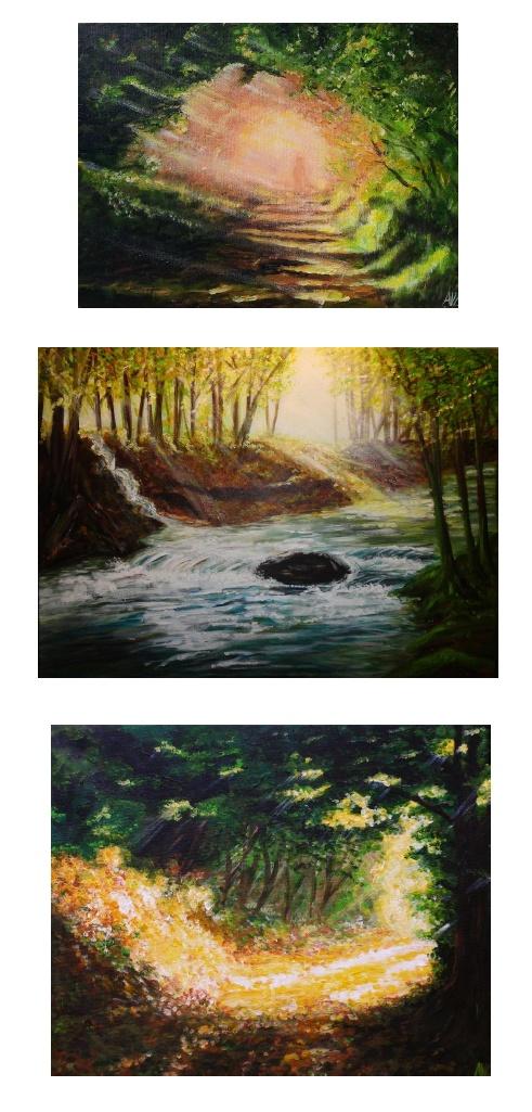 Terressenciel Peintures AV Lucot